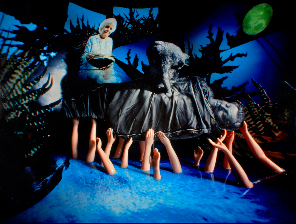 """Disarmed"" 2008, Pinhole C-Print"