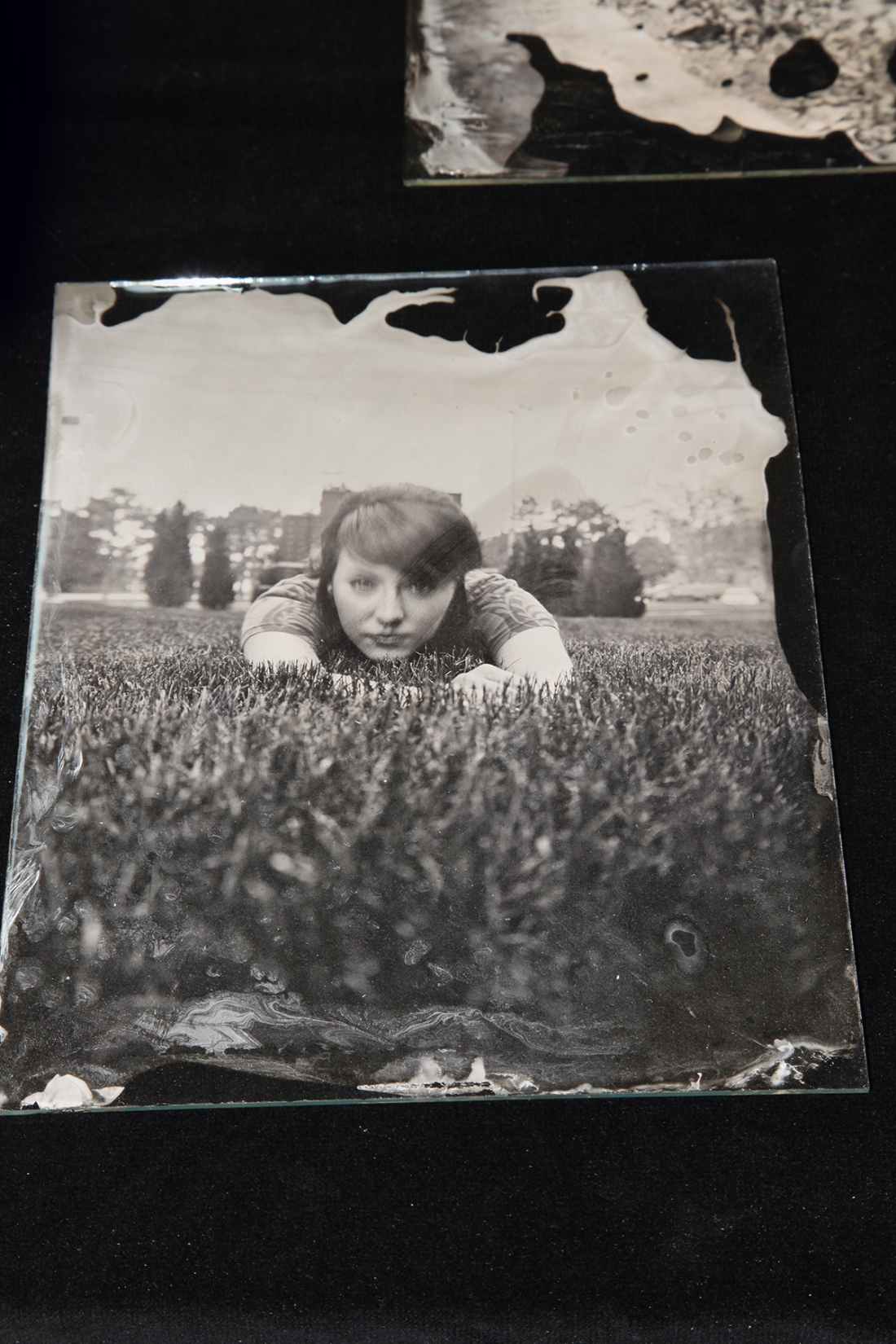 8x10 glass plate negative by Josh Torres